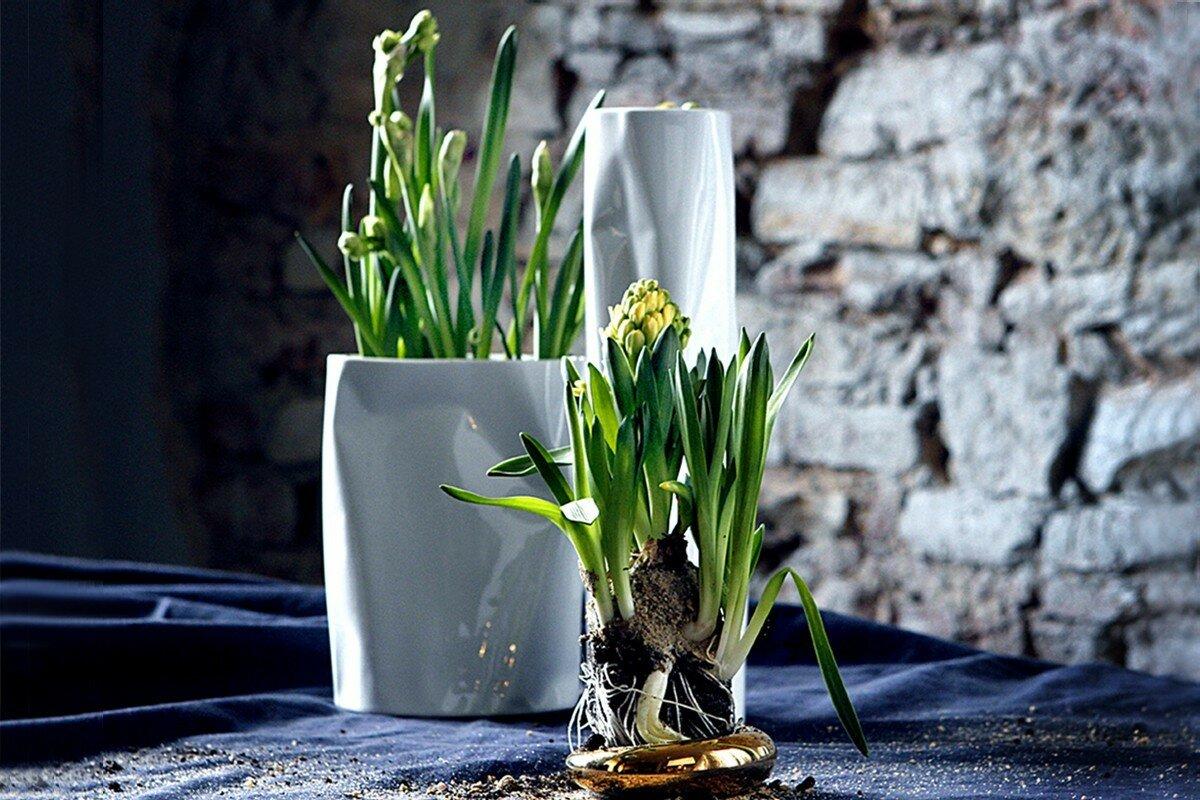 Modus Design, Wiosna 2019  Czy masz przygotowany wazon?